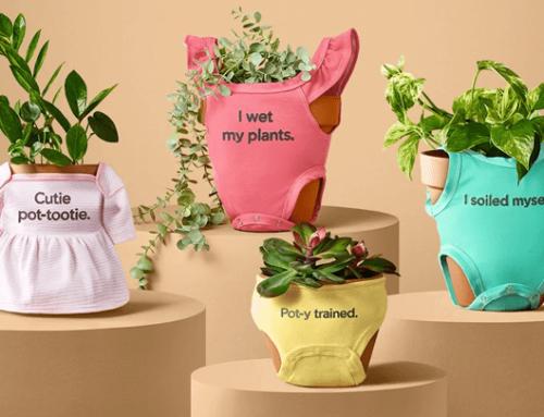 Nueva colección de ropa para plantas